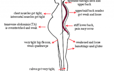 The effects of pregnancy on your body
